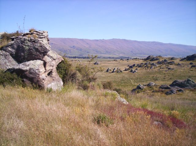 Middlemarch Outcrops