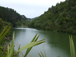 Lower dam, Karori Sanctuary