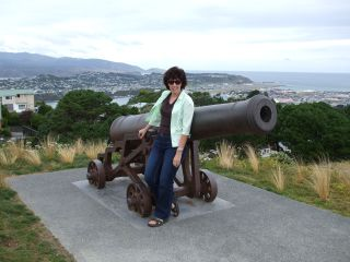 Shelley, Mt. Victoria, Wellington