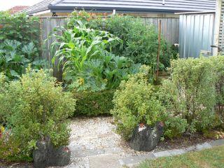 Mr. Munro's garden