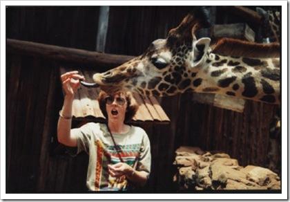 Giraffe_nairobi