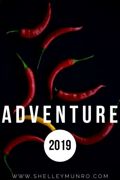 Cooking Adventure 2019