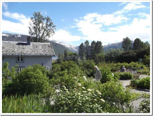 Arctic-Alpine Botanic Garden, Tromso