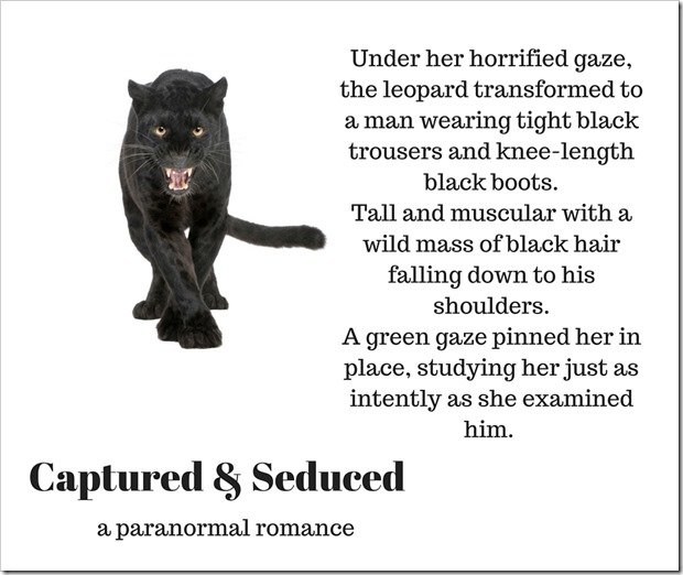 Captured & Seduced