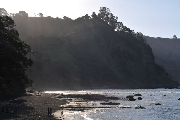 Beach at Goat Island