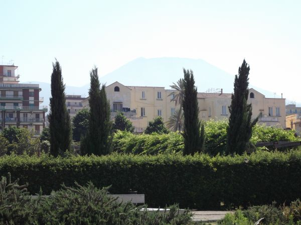 Herculaneum and Mt Vesuvius in background