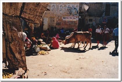 India - Jaiselmer_0002