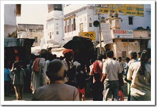 India - Pushka_0001