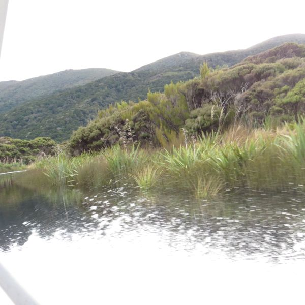 Scenery from the boat