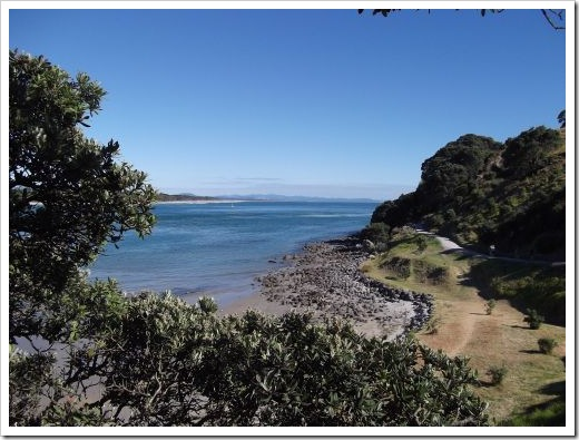 Mt Maunganui Walking Track