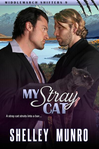 My Stray Cat