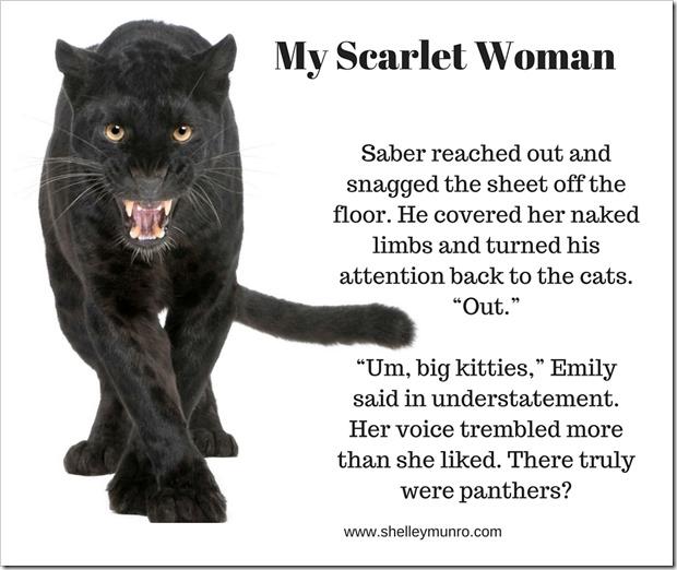 MyScarletWomanBlackCat