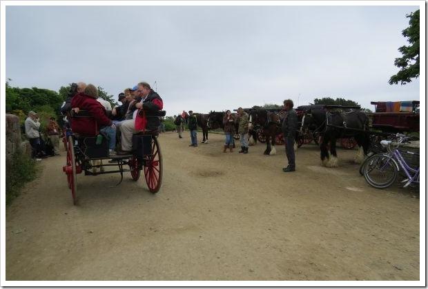 Sark_Horse Park
