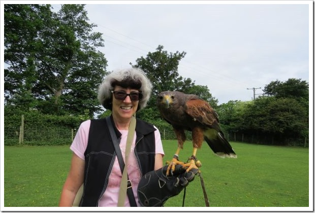 Shelley and Hawk