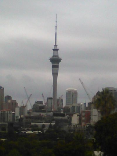 View of Sky Tower from Ponsonby