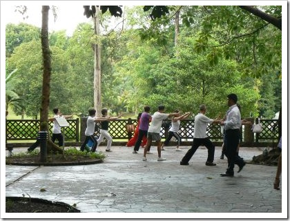 Tai Chi Botanic Gardens