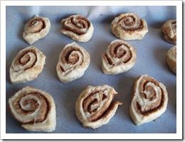 Uncooked Cinnamon Scrolls