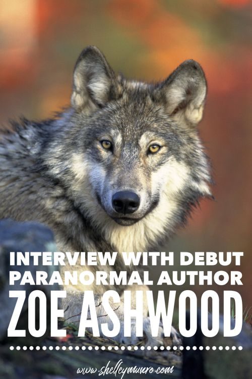 Interview with Debut Author Zoe Ashwood