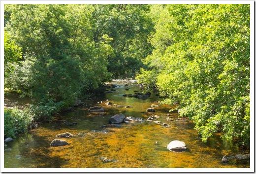 bigstock-River-Teign-Dartmoor-Devon-Nat-48260552